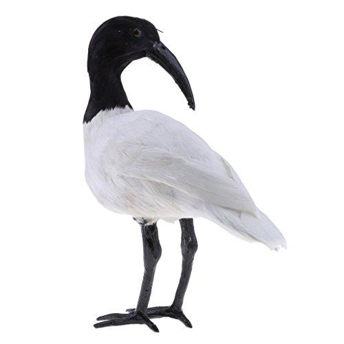 gazechimp Falso Pássaro Artificial Imitação Realista Imitação De Decoração Para Casa Jardim 10 Tipos - Nº8 Ibis com crista preto