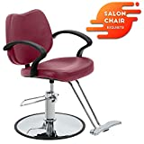 Hair Salon Chair Styling Heavy Duty Hydraulic Pump Barber Chair Beauty Shampoo Barbering Chair for Hair Stylist Women Man