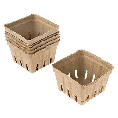 天然纸浆果篮