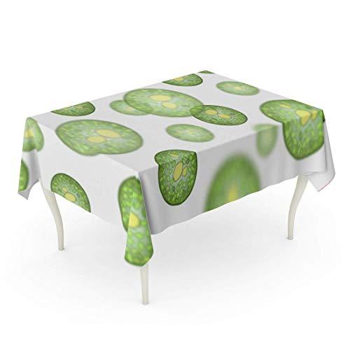 LIS HOME Rechteckige Tischdecke Grüne Chlorella Einzelzellalgen Lipidtröpfchen Biokraftstoffproduktion von Mikroalgen Unter dem Mikroskop Weiße Algen Tischdecke
