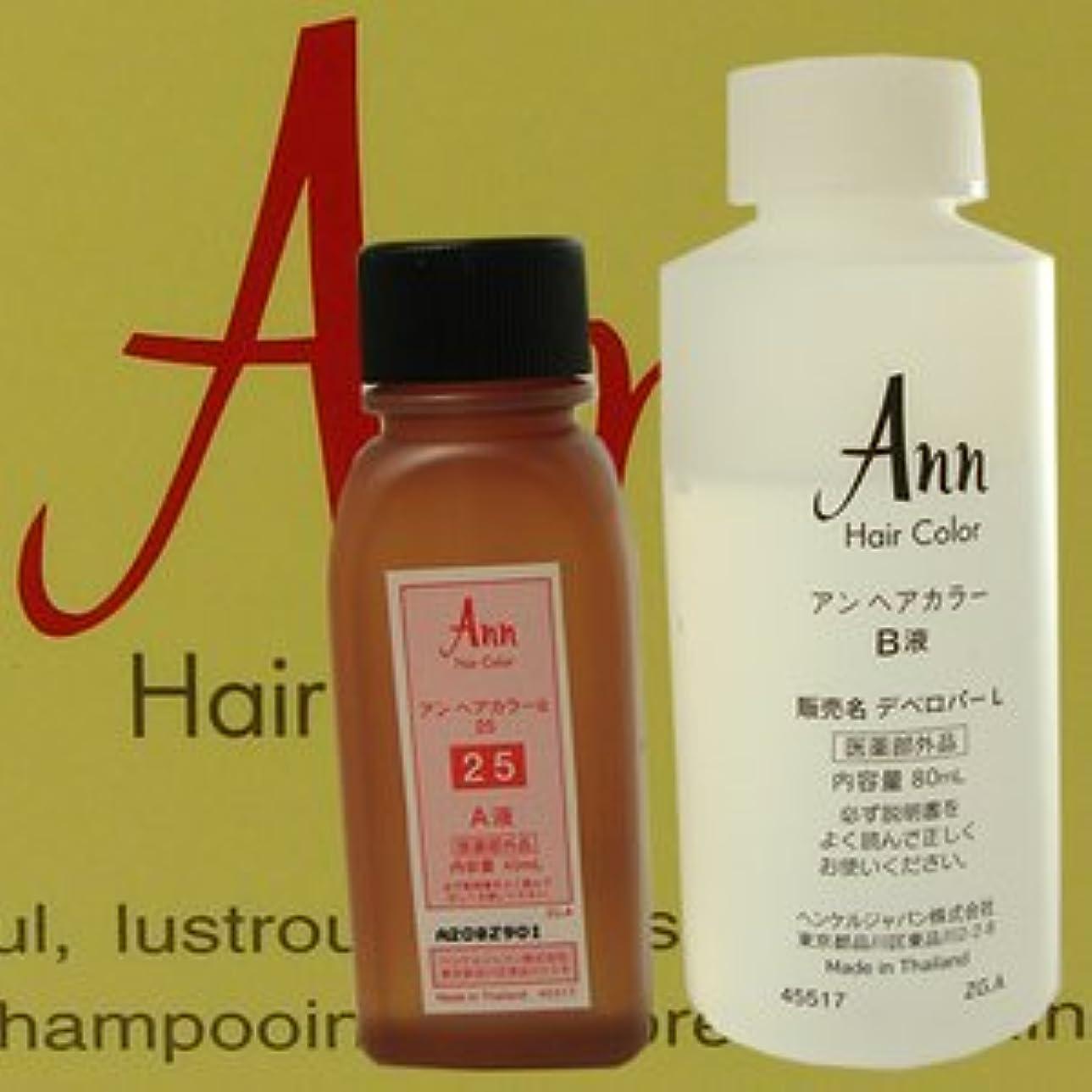 変換アジア接地アン ヘアカラー 【白箱】 ANN HAIRCOLOR 25(黄色味をおびた濃い栗色)