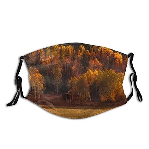 Máscara facial de moda cómoda Naturaleza Otoño Valle Bosque a prueba de sol Moda Bandana Headwear para la pesca