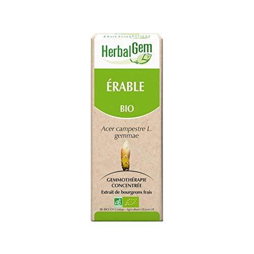 Erable Bio - 50 ml - Herbalgem