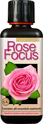 Rose Focus Liquid Concentrated Fertiliser 300 ml