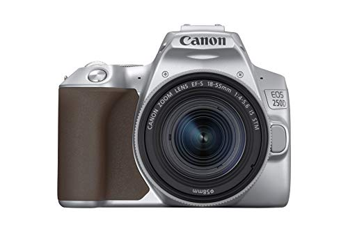 Canon EOS 250D + EF-S 18-55mm f/4-5.6 IS STM Kit fotocamere SLR 24,1 MP CMOS 6000 x 4000 Pixel Argento