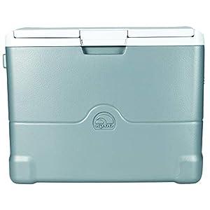 Igloo Iceless 40-Quart Cooler with 110-volt Converter, Grey (40375)