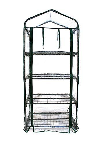 N.G.Niccolai Serre per Orto, Giardino o Terrazzo - Varie Misure - Telo Trasparente in PVC e Struttura in Metallo Verniciato (69x49x157cm)