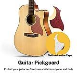 Immagine 1 donner chitarra acustica 6 corde