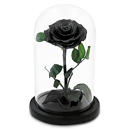 TRIPLE K Rose im Glas - Infinity Rose - Geschenk - Geburtstag, Valentinstag, Hochzeitstag, Verlobung - 3 Jahre haltbar - inkl. Grußkarte - schwarz