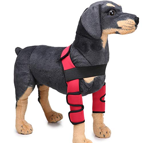 Alfie Pet - Tegan Dog Front Leg Braces with Supporting Sleeve - Color: Red, Size: Large