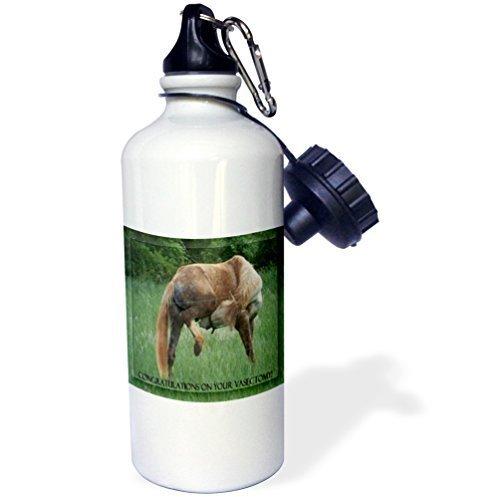 Cukudy Sport Waterfles Cadeau, Grappig Paard Groene Achtergrond Gefeliciteerd Met Vasectomy Wit RVS Waterfles voor Vrouwen Mannen 21oz