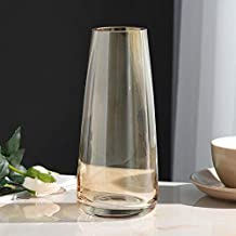 Flower Bottle Fashion Crystal Decorative Vase Transparent Hydroponic Vase Glass (22 * 6.5cm)