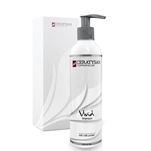 COIFFEUR DELUXE Pflege-Shampoo ohne Silikon | Feuchtigkeit und Glanz für trockenes und strapaziertes Haar | Mit Molke-Protein | organic | 250 ml | Friseur-Produkt