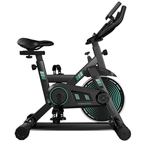 Indoor Home Exercise Cycling Bike Stationary with With LCD Digital Monitor Phone Holder for Men Women, Max Load 330Lbs (Green)