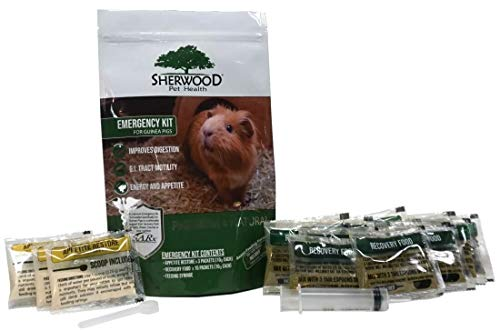 Pet Guinea Pig Emergency Kit with Timothy Recovery Food (Small Emergency Kit)