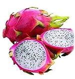 50pcs Pitaya Seeds, White Dragon Fruit Seeds, (Pitaya/Pitahaya/Strawberry Pear) Bonsai
