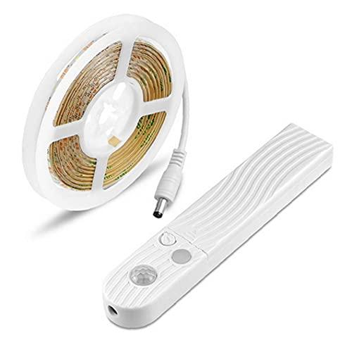 Hainice Tira de luces LED cadena USB sensor de movimiento armario luz 5 V con caja de batería impermeable para dormitorio armario armario 3 m luz cálida