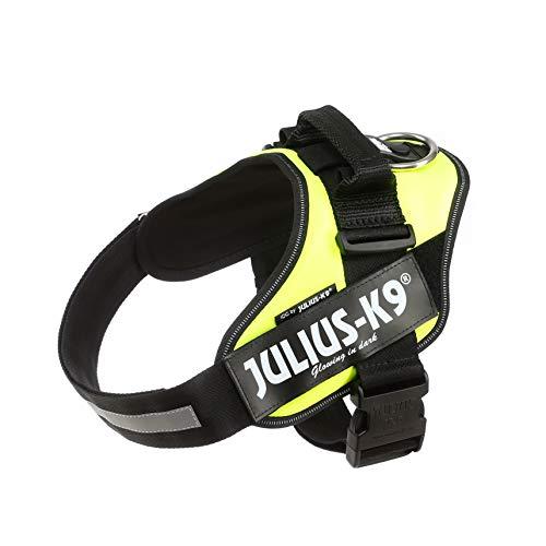 Julius-K9, 16IDC-FNE-1, IDC-Powergeschirr, Hundegeschirr, Größe: 1, UV neon grün