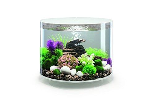 OASE biOrb TUBE 35 LED Aquarium, 35 Liter - Aquarien Komplett-Set mit LED Beleuchtung und patentiertem Filter-System, Acryl-Becken in Weiß