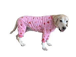 BT Bear Vêtements pour chien en polaire chaud pour l'automne et l'hiver Protection des articulations anti-poils 4 pattes pour chien Labrador Golden Retriever Shepherd