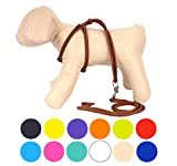 CollarDirect Rolled Leather Dog Harness Small Puppy Step-in Leash Set for Walking Pink Red White...