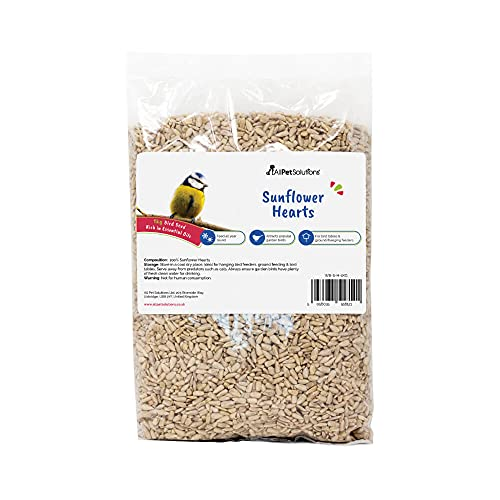 Sunflower Hearts Wild Bird Food 1kg | No Mess & No Waste Garden Bird Food | Husk Free and Dehulled Seeds for Birds High in Energy & Protein