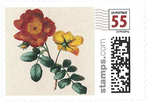 Vintage Flowers Love First Class Stamps - Sheet of 20