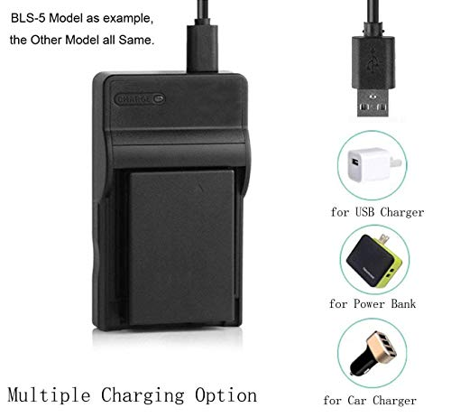 2-Pack Battery and Charger for Samsung SC-D453 SC-D455 SC-D457 Digital Camcorder
