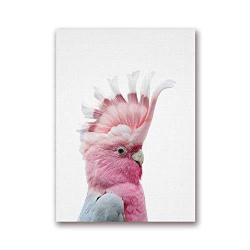 Muur Canvas Schilderij Kaketoe Australische Vogel Poster Australische Dier Moderne Fotografie Foto Kinderkamer Decor / 50x70cm zonder lijst