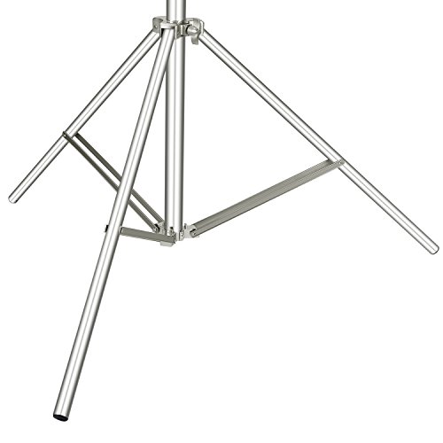 Neewer Photo Studio 13 feet/3.9 Meters 2-in-1 Light Stand with 74.8-inch Boom Arm and Blue Sandbag for Supporting Softbox Studio Flash for Video Portrait Photography, Aluminum Alloy (Empty Sandbag)