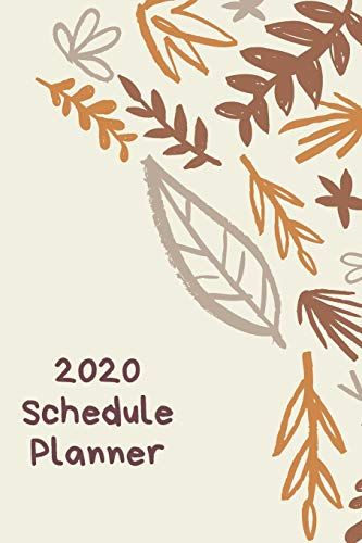 2020 Planner: Daily-Weekly-Monthly Schedule Organizer | Diary & Notes | Tel Info & Password Log | Perfect Size 6x9 inches | 128 Pages (Cool Planners)