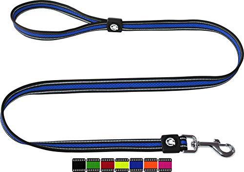 DDOXX Hundeleine Air Mesh, Reflektierend, Hand-Schlaufe, Gepolstert, 120 cm   viele Farben & Größen   für kleine & große Hunde   Schlepp-Leine   Führ-Leine Hund Katze Welpe   Lauf-Leine   Blau, M