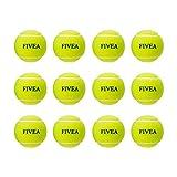 【Amazon.co.jp 限定】フィビア(Fivea) 硬式 テニスボール 1ダース(12球入り) ノンプレッシャーボール FIV-12