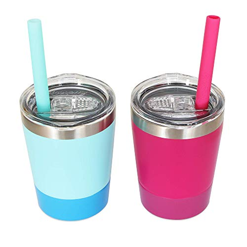 Sippy Cups for Toddlers, 2 Pack of 8.5 OZ Toddler Cups, Housavvy Kids Cups with Straws and Lids BPA Free Double Wall Insulated Stainless Steel Easy Cleaning and Dishwasher Safe (Light-Blue/Rose)