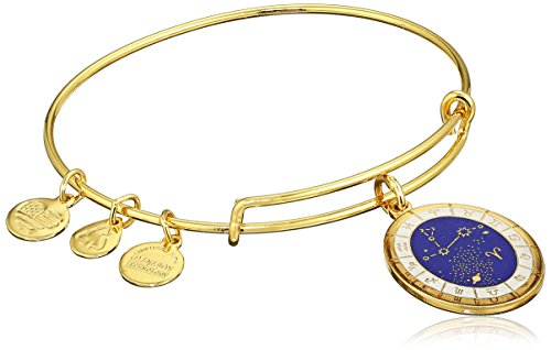 Alex and Ani - Pulsera con constelación