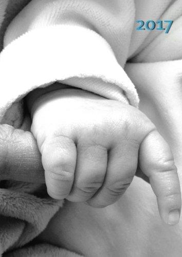 dicker TageBuch Kalender 2017 - Baby Blau (ein Junge): Endlich genug Platz für dein Leben! 1 Tage = 1 A4-Seite