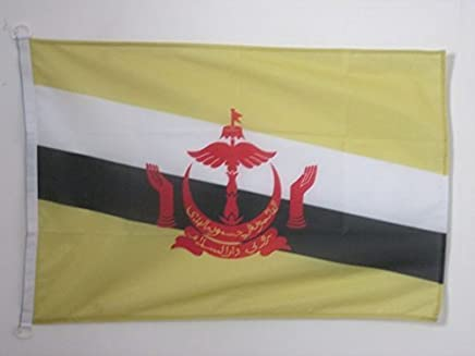 BRUNEI 扁平 2 英尺 x 3 英尺 户外 - BRUNEIAN 公头 90 x 60 厘米 - 竹条 2x3 英尺 针织聚酯带戒指 - AZ FLAG