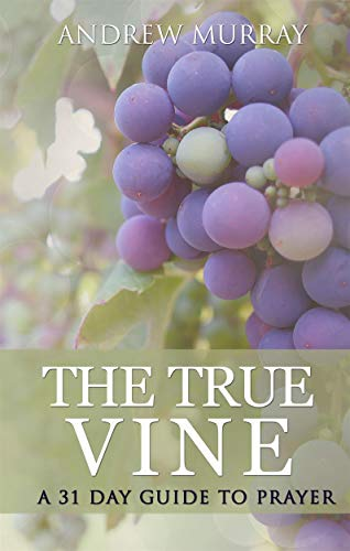 The True Vine: a 31 day guide to prayer (English Edition)