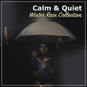 #20 Calm & Quiet Winter Rain Collection