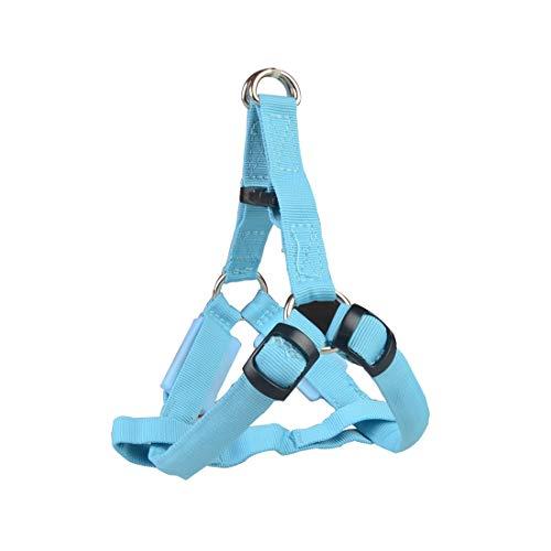 Fenximei Cool Pet Supplies LED borstband voor honden met gemiddelde grootte en grote riem voor honden met verlichting, Charging model M, Blauw