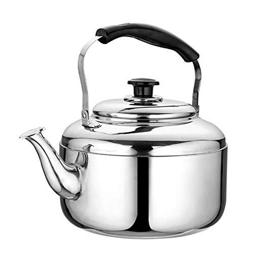 Bouilloire à thé Whistle Poignée Ergonomique Résistante à la Chaleur et Théière en Acier Inoxydable Poli de Grande Capacité, Adaptée au Dessus de Cuisinière (Couleur : Silver, Taille : 7L)