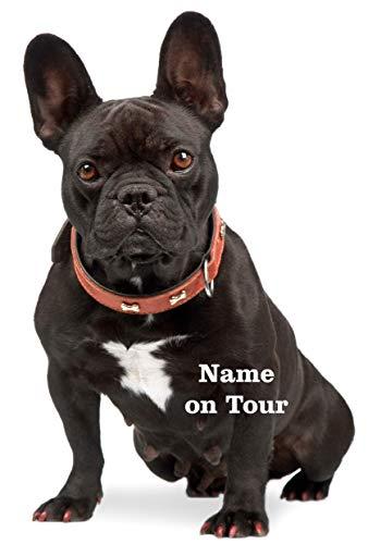 wodtke-werbetechnik hondensticker Franse bulldog zwart