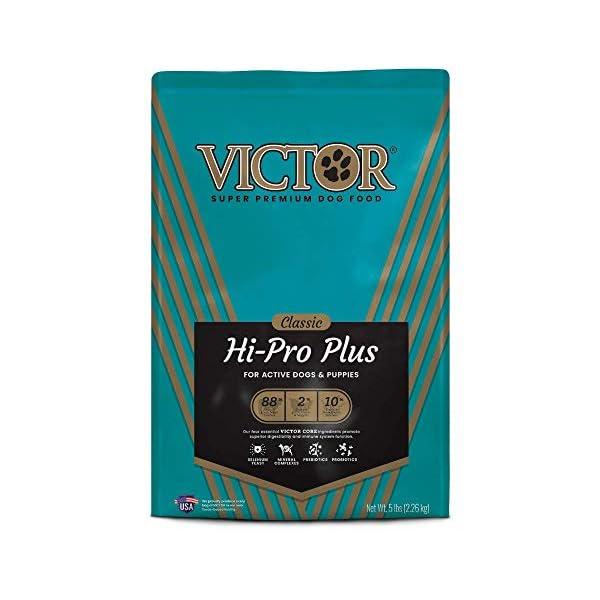 Victor Classic – Hi-Pro Plus, Dry Dog Food