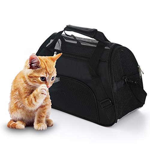 Best pet small animal carriers list 2020 - Top Pick