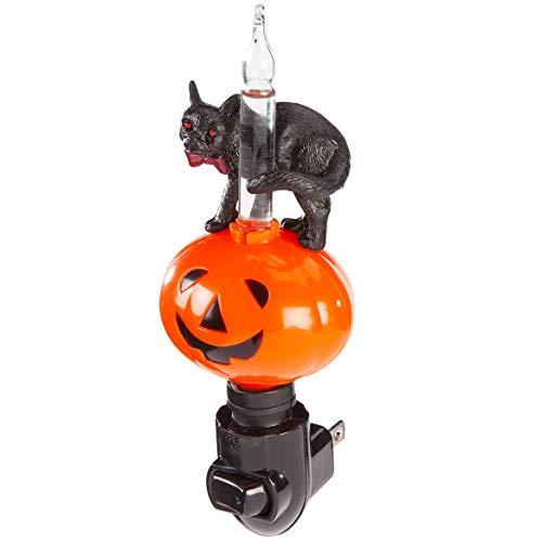 Jack O'Lantern and Black Cat