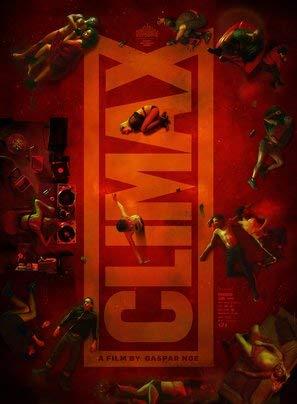 Climax – Gaspar Noe – Film Poster Plakat Drucken Bild - 43.2 x 60.7cm Größe Grösse Filmplakat
