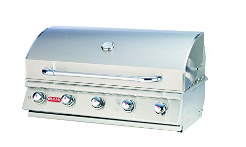 Bulls Outdoor Products Renegade 32369 5 Burner Drop-in Gas Grill Review