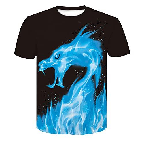 Camiseta Hombres Casual Wicking Transpirable Hombres Streetwear Verano Creativo 3D Impresión Cuello Redondo Hombres Shirt Deportiva Senderismo Fiesta Hombres Manga Corta AE067 M