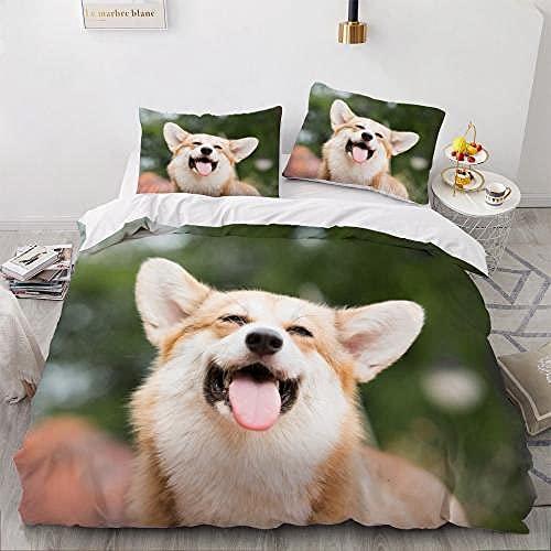 RITICKLY Juego de cama de 3 piezas con funda nórdica y funda de edredón para adultos y adolescentes (260 cm x 230 cm)_C