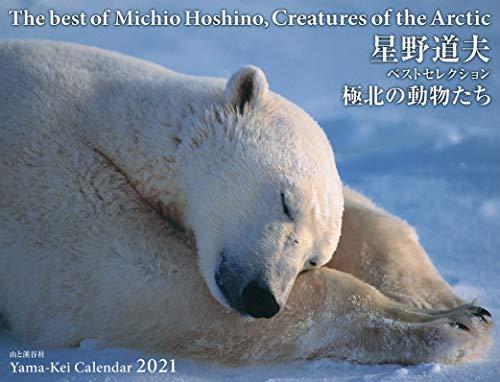 カレンダー2021 星野道夫ベストセレクション 極北の動物たち(月めくり・壁掛け) (ヤマケイカレンダー2021)の詳細を見る